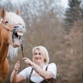 Haflinger Mailänder gähnt, Ivonne Hellenbrand